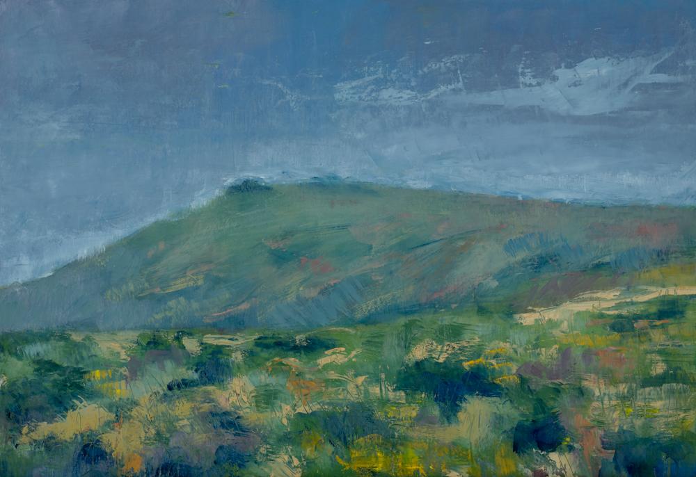 Ugborough Moor and Beacon