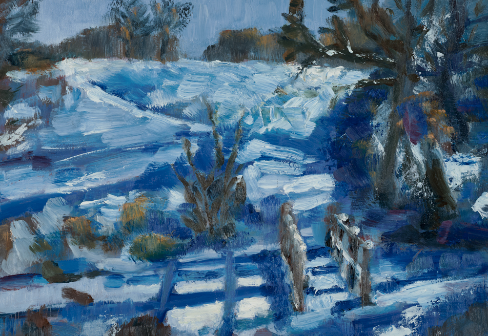 Valley in snow, Wimbledon Common I