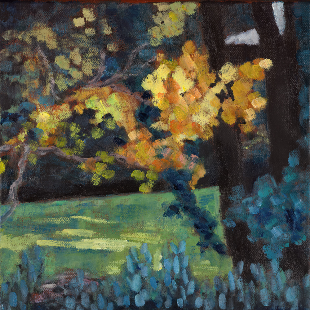 Haslemere sunset oak
