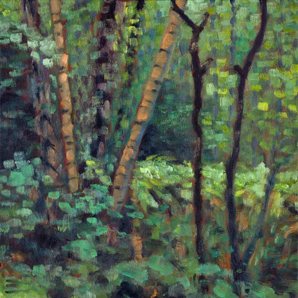 Putney Heath woodland